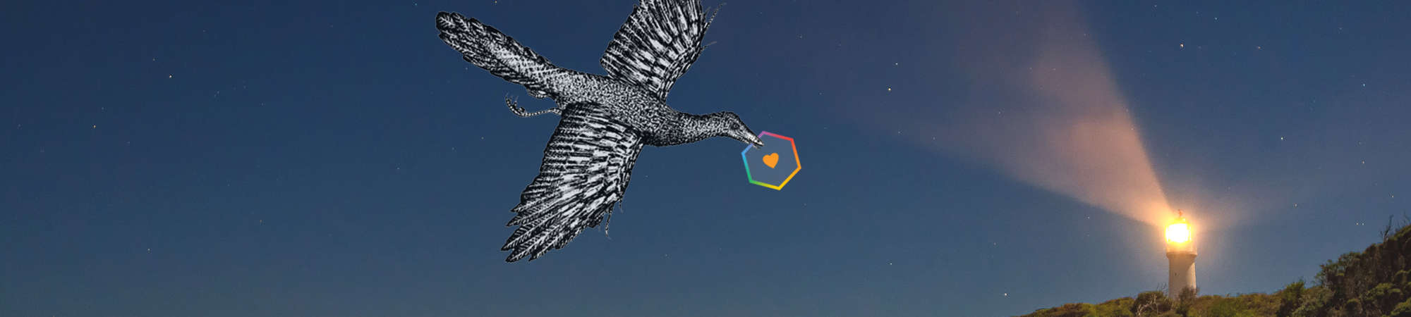 A bird in the sky carrying OnSpotStorys logo to illustrate content creation services e.g. film
