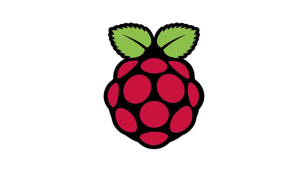 raspberrypi logo above section about them